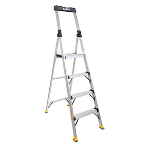Bailey Retail and Office Platform Ladder